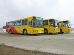 バス3台_右斜1.jpg